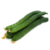 春播农庄有机栽培黄瓜500g
