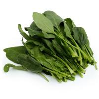 春播农庄有机栽培菠菜300g