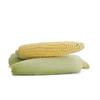 春播农庄有机栽培甜玉米700-900g(3-4根)