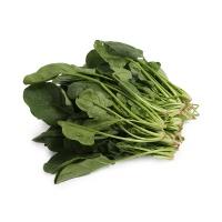 自然乐章农庄有机栽培菠菜300g