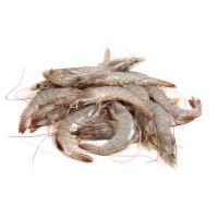 马来西亚冷冻黑金刚白虾(41-50只/kg)430g