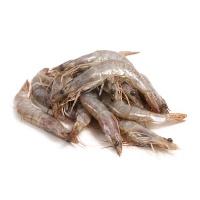 马来西亚冷冻黑金刚白虾(61-70只/kg)430g
