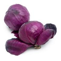 诚誉农庄有机栽培紫甘蓝700-900g