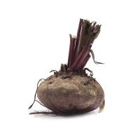 兴农鼎力农庄有机栽培红甜菜350-450g