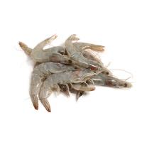 原装进口厄瓜多尔白对虾(50-60/kg)1000g