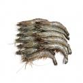 马来西亚野生海捕老虎虾(31-35只/kg)430g