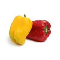分享收获农庄彩椒500-700g(红、黄)