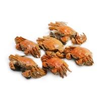 2017年春播阳澄湖大闸蟹美礼盒 母蟹2.0-2.4两3只,公蟹2.8-3.2两3只
