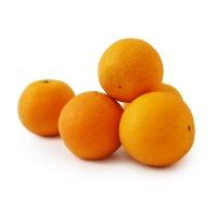 安心优选南非脐橙4粒装(单果约170-200g)