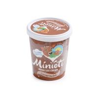 英国小小奥蒂牌巧克力味冰淇淋(四人家庭分享装)500ml