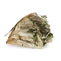 杨晶种植洪湖干荷叶两片装约50g