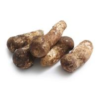 香格里拉鲜松茸10-12cm500g