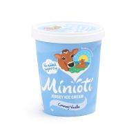 春播直采低糖低脂香草味冰淇淋(四人家庭分享装)500ml