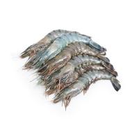 冷冻马来西亚老虎虾(21-25只/kg)400g