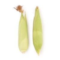李红兵种植冻甜糯玉米2根装