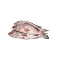 冷冻石斑鱼450g